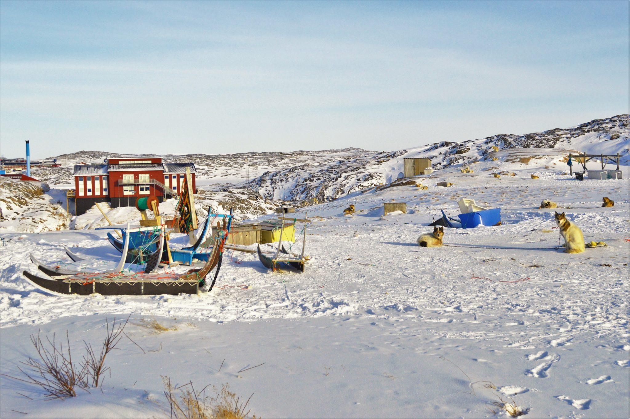 Dog farm in Ilulissat, Greenland