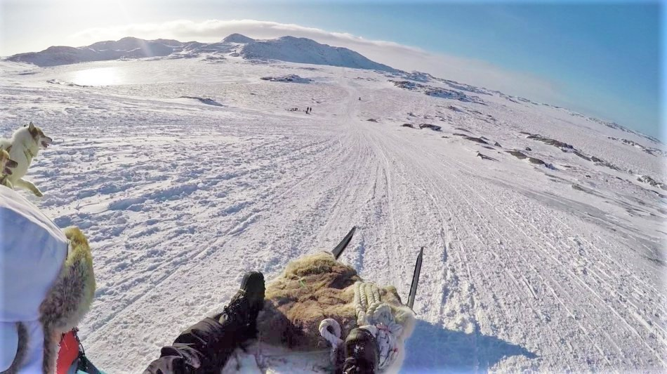 Downhill shot on dog sled in Greenland