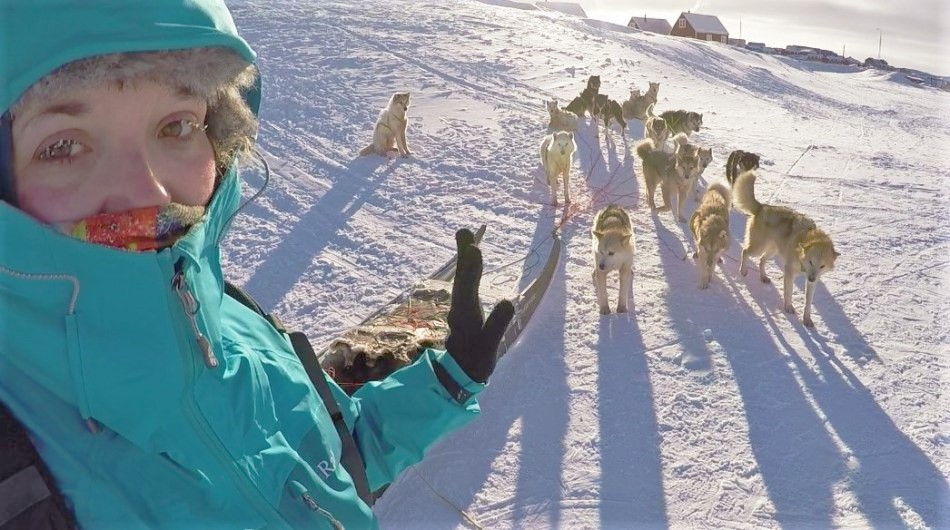 Greenlandic Sled dogs on expedition, Greenland