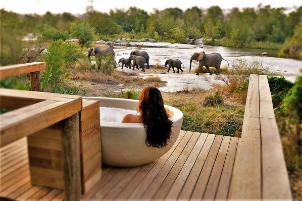 Londolozi Tree Camp , Private Granite Suites, Kruger National Park, South Africa